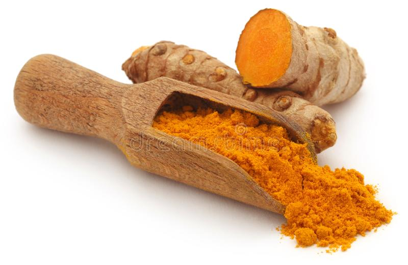 Raw turmeric with powder. In a wooden scoop over white background royalty free stock photography