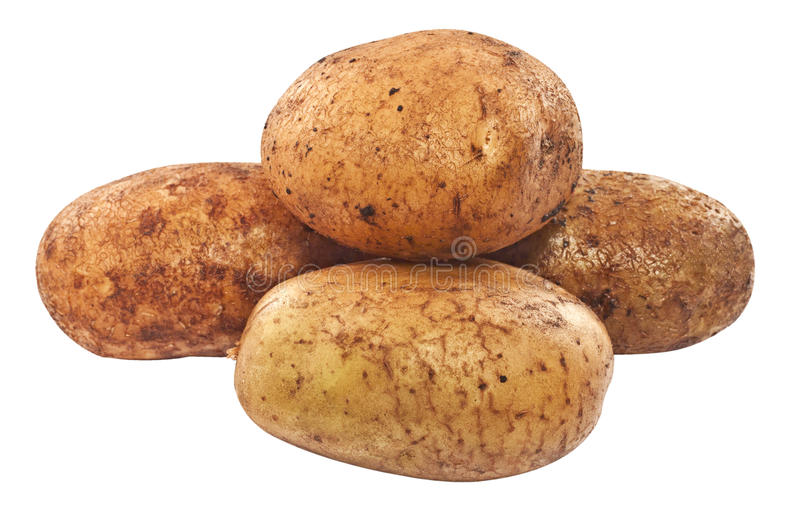 Raw unpeeled potatoes stock photo