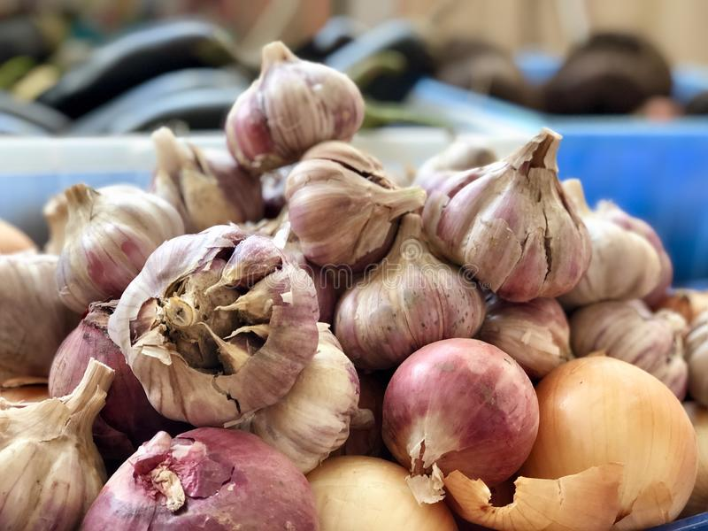 Raw vegetables: garlic and onions royalty free stock photo