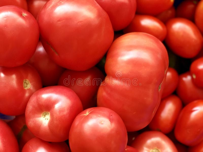 Raw vegetables: ripe juicy red tomatoes royalty free stock photos