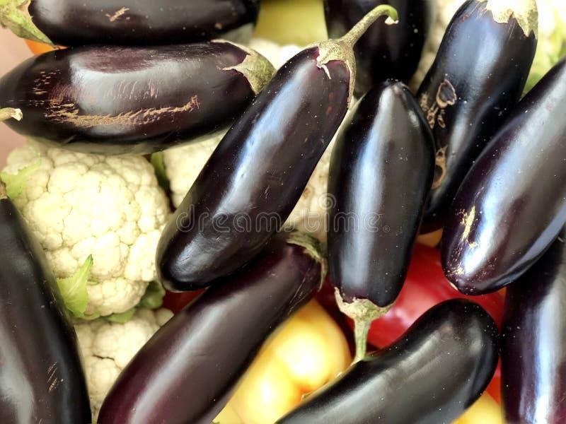 Raw vegetables: zucchini and cauliflowe stock image