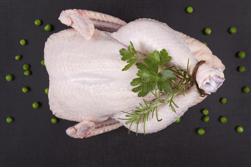 Raw whole chicken. royalty free stock photos