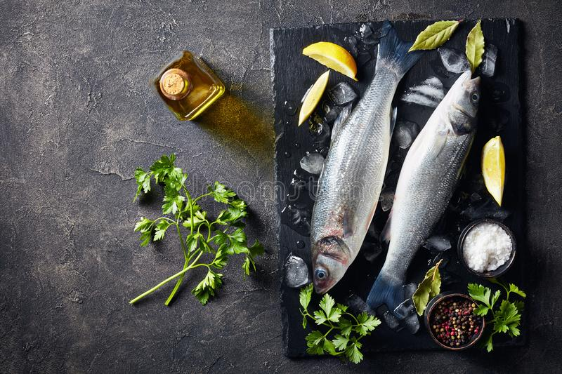 Raw whole sea bass with lump ice stock images