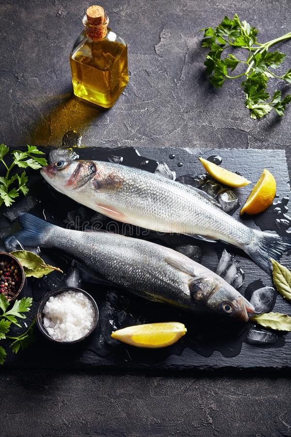 Raw whole sea bass on a slate tray. Two fresh raw whole sea bass with lump ice, lemon slices, spices and herbs on a slate plate on a concrete table, vertical stock image
