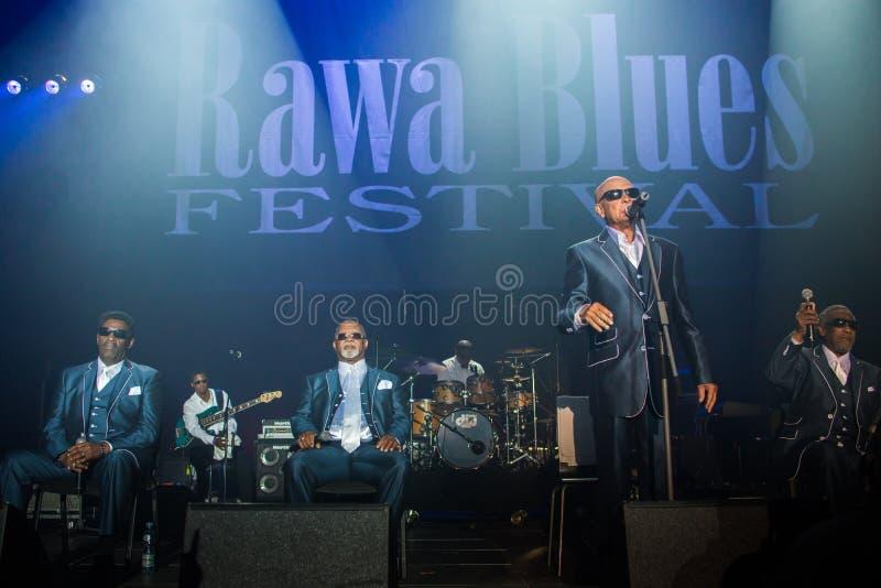 Rawa błękitów festiwal 2014: Niewidome chłopiec Alabama fotografia royalty free