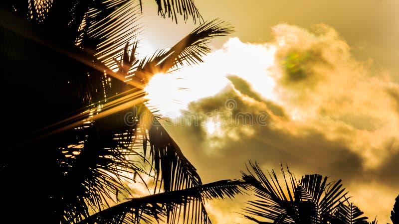 Ray av solljus på den karibiska stranden arkivfoton