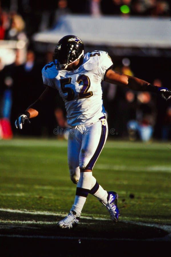 Ray Lewis Baltimore Ravens photographie stock