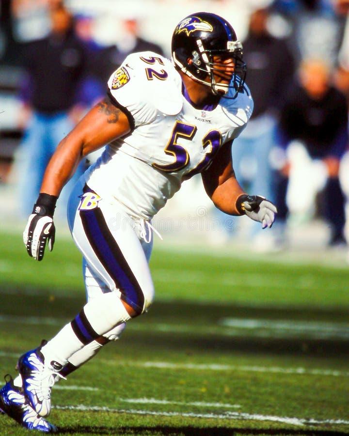 Ray Lewis Baltimore Ravens imagens de stock royalty free