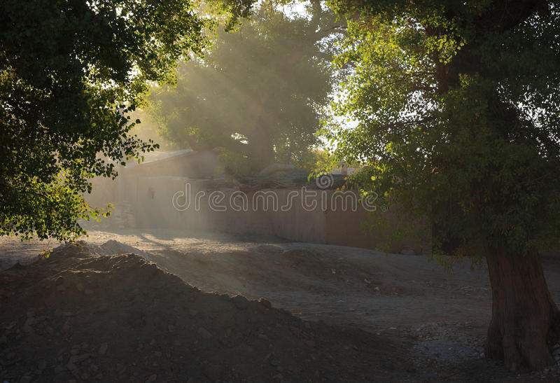 Ray of morning sunlight stock photo