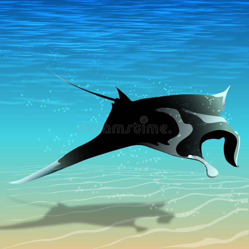 Rayo de manta del vuelo ilustración del vector