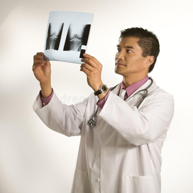Rayon X de examen de docteur. photos stock