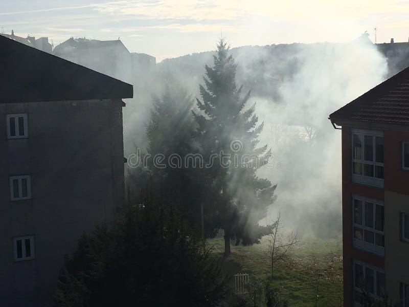 Rayon de fumée photos libres de droits