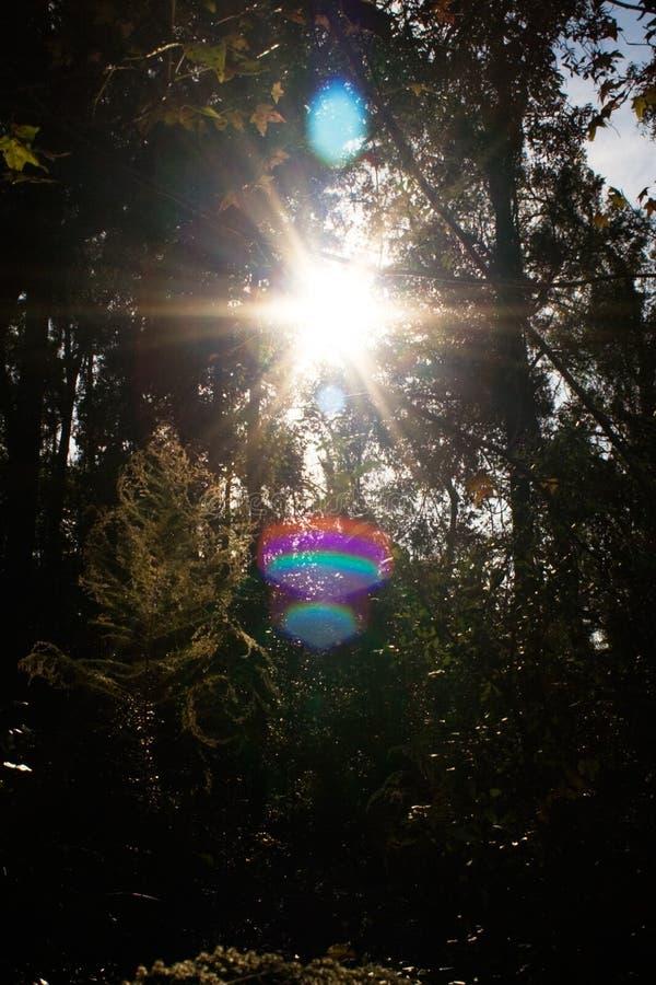 Rayon de soleil images stock