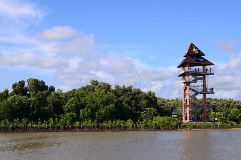 Rayong, tour de point de vue de la Thaïlande chez le Phra Chedi Klang Nam Mangrove Ecology Learning Center photo stock