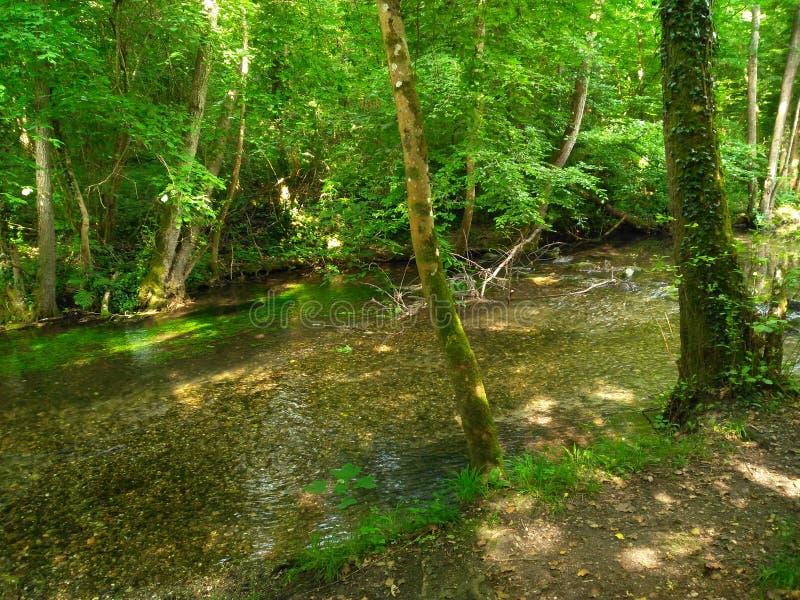 Rayons de soleil du soleil en rivière photographie stock libre de droits