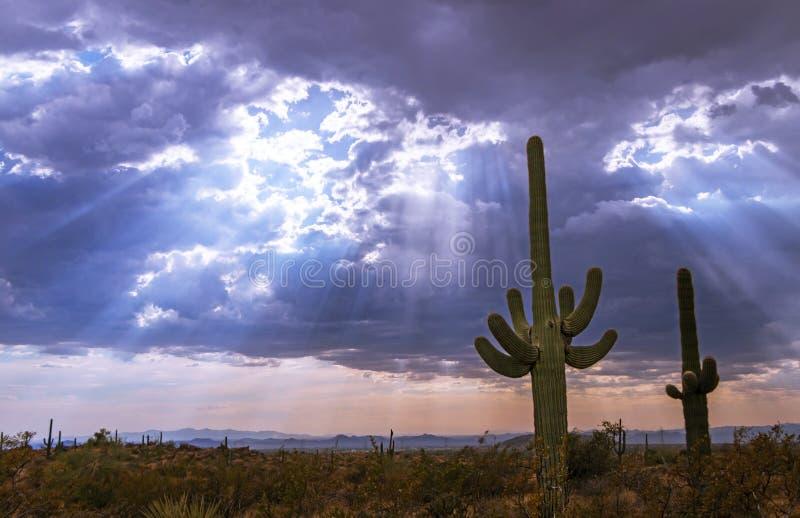 Rayons de soleil et nuages de tempête au-dessus de désert de l'Arizona image stock