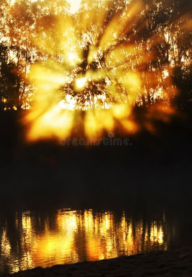 Rayons de soleil spectaculaires de lever de soleil éclatant par l'eau de rivière se reflétante de brume photographie stock libre de droits