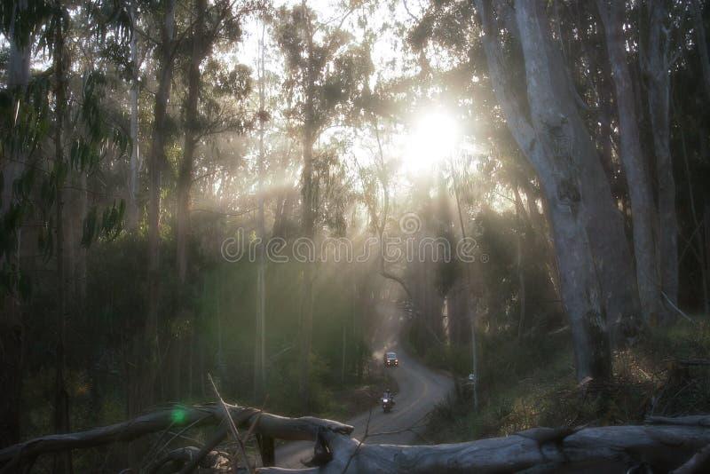 Rayons de Sun au-dessus de la route photo stock