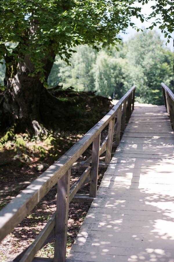 Rayons de Sun sur le pont photos stock