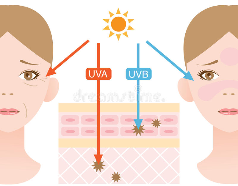 Rayons ultraviolets illustration libre de droits