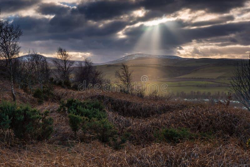 Rayos crepusculares sobre las colinas de Cheviot imagen de archivo