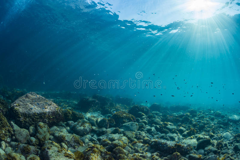 Rayos de la luz del sol que brillan en el mar, visión subacuática foto de archivo