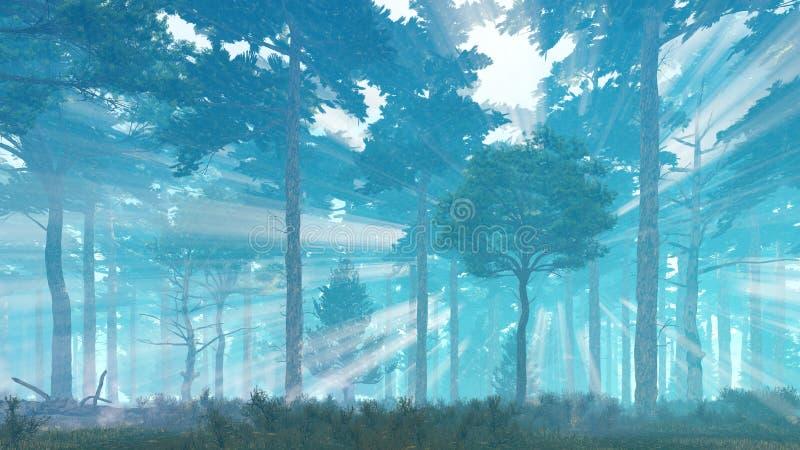 Rayos de sol en bosque brumoso del pino stock de ilustración