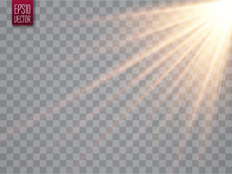 Rayos de Sun con los haces en fondo transparente Proyector de oro Flash de Sun Ilustración del vector stock de ilustración