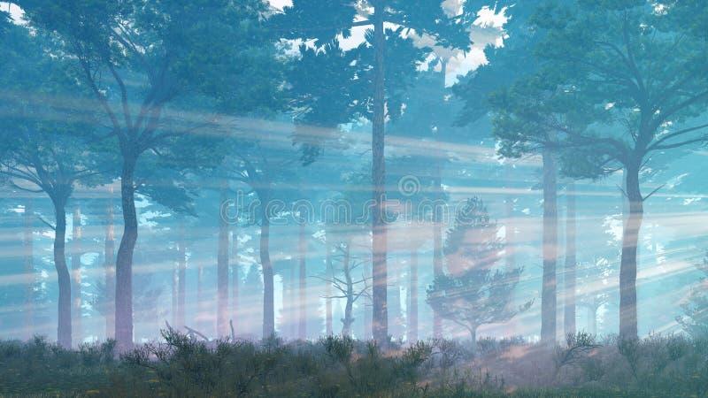 Rayos de Sun en bosque brumoso del pino stock de ilustración