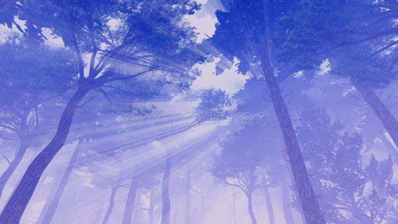 Rayos de Sun en las coronas de pinos ilustración del vector