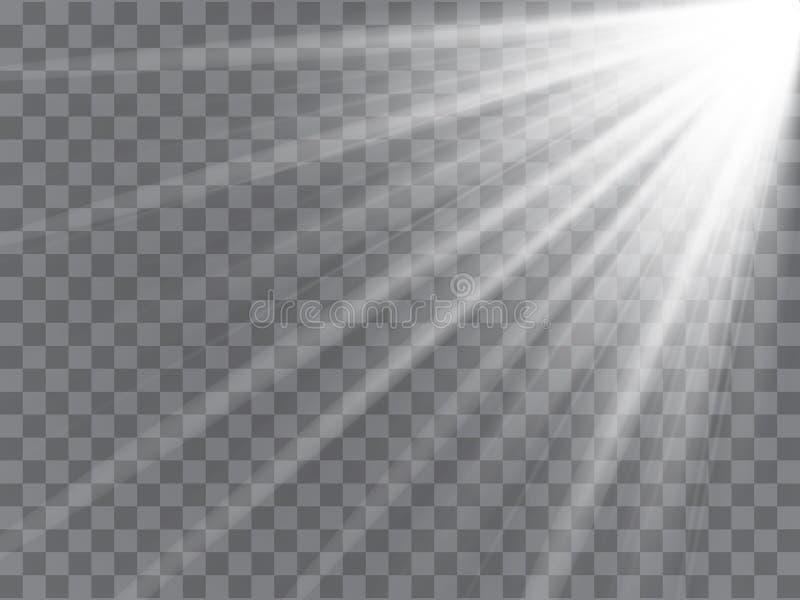 Rayos del proyector con los haces en fondo transparente Vector ligero de destello stock de ilustración