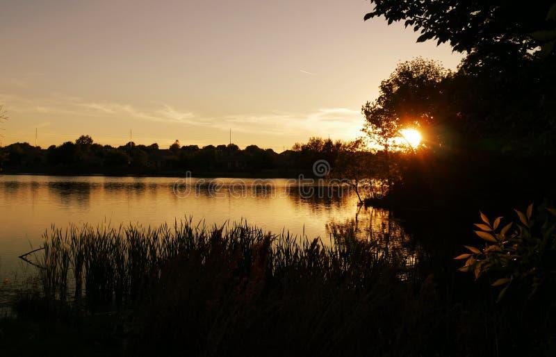 Rayos del sol poniente que se rompe a través de los árboles en la puesta del sol por el lago imagenes de archivo