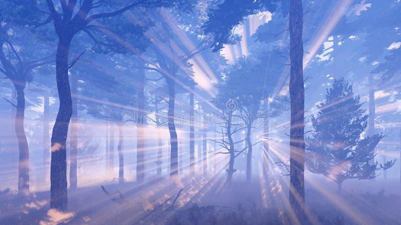 Rayos mágicos del sol en bosque brumoso ilustración del vector