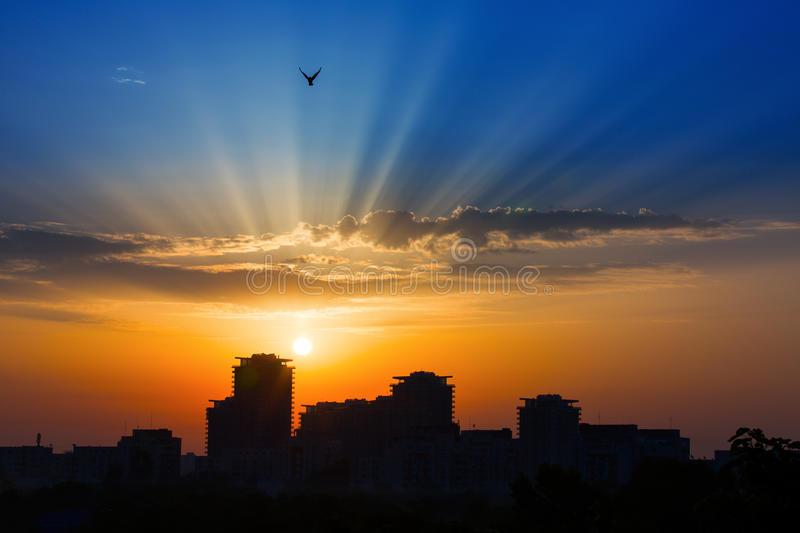 Rays of lights at sunrise sunset over a city with birds on light. S royalty free stock images