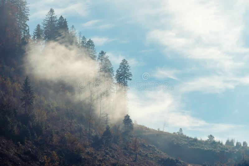 Rays of the sun breaking through the fog royalty free stock images