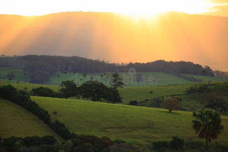 Sunbeams over green hills landscape in Australia. The magic moment before the sun sets: Golden sunbeams streaming through a cloud layer down to the green slopes royalty free stock photos