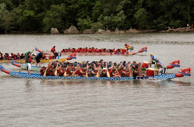 Raza de barco de dragón en el Potomac foto de archivo libre de regalías