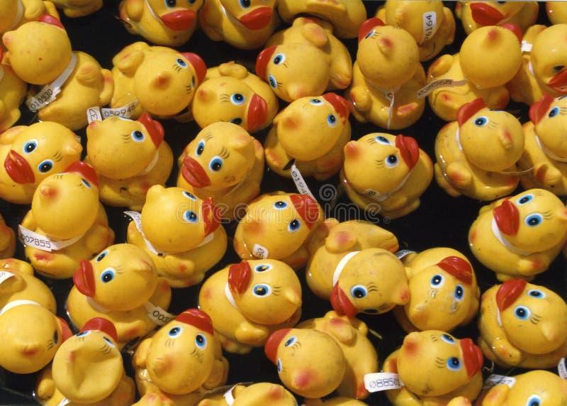 Raza de goma del pato fotografía de archivo libre de regalías