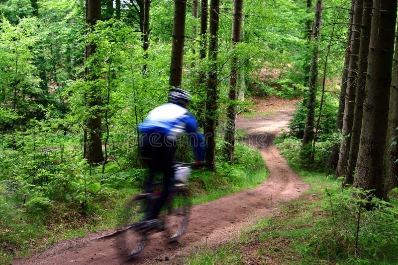 Raza de la bici fotografía de archivo libre de regalías