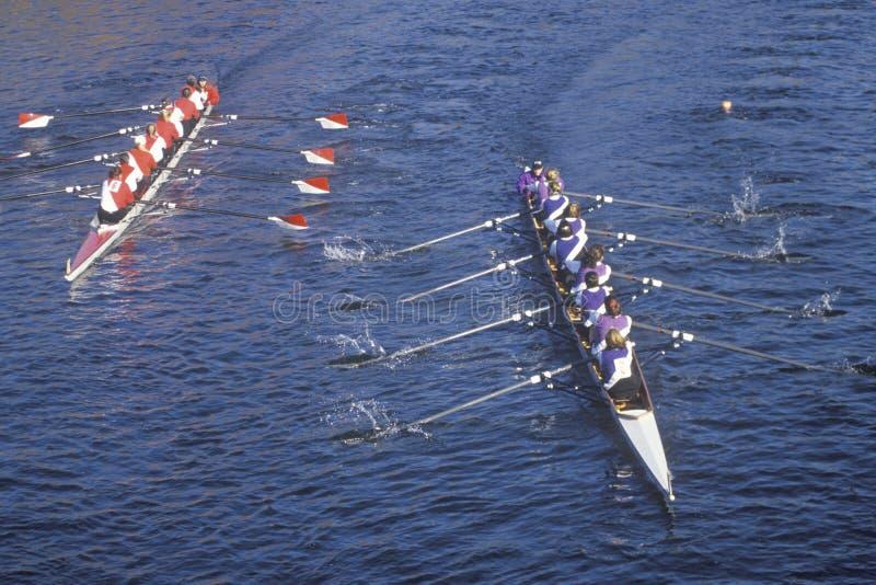 Raza femenina del Rowing fotografía de archivo