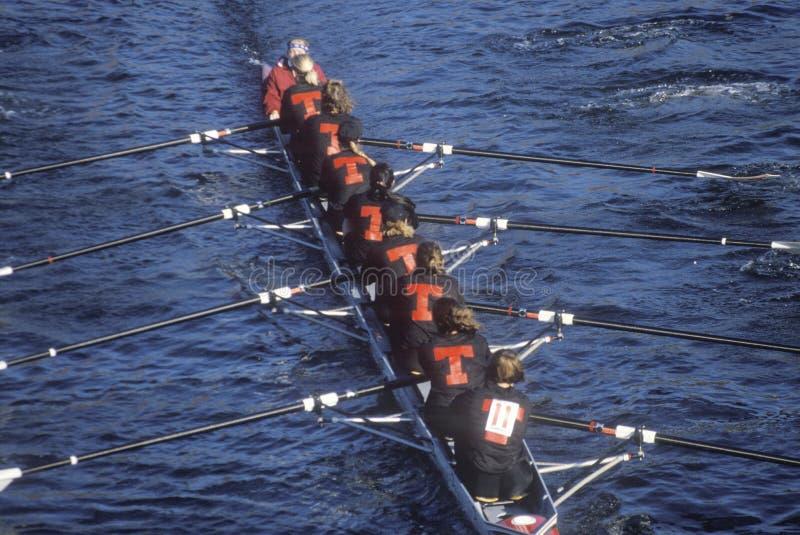 Raza femenina del Rowing imagen de archivo libre de regalías
