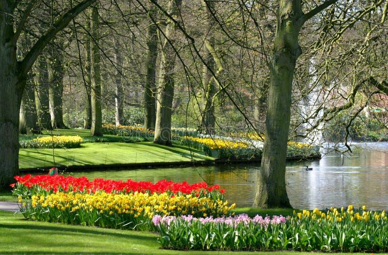 razem park wiosna obrazy stock