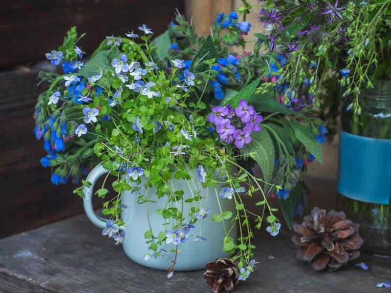 Razgotrave w małym kubku, powabny lato bukiet błękit kwitnie Sosnowych rożki, strzał od zamkniętego pasma zdjęcia stock