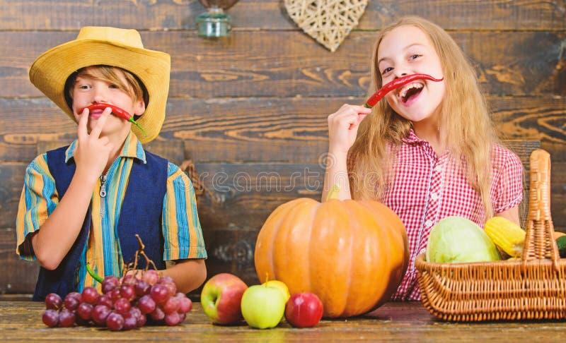 Razones por las que cada ni?o debe experimentar el cultivo Mercado de la granja Hermanos que se divierten Verduras del muchacho d foto de archivo libre de regalías