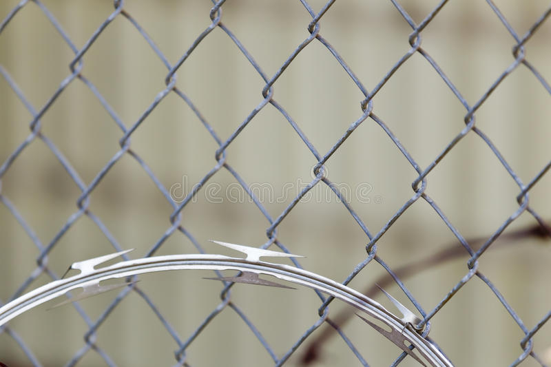 Download Razor Wire stock photo. Image of construction, limit - 24944990