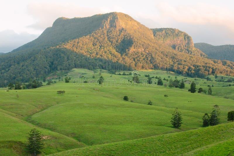 Razorback di Mt fotografie stock libere da diritti