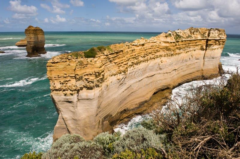 Razorback In Port Campbell In Victoria, Australia Royalty Free Stock Photo