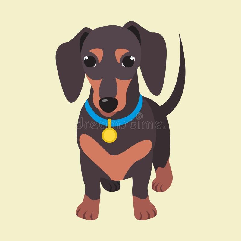 Razza sveglia del bassotto tedesco del cane domestico sui precedenti bianchi illustrazione vettoriale