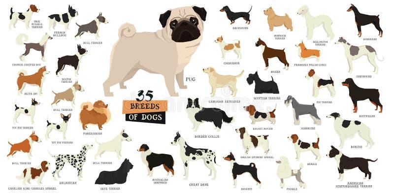 Razze degli oggetti isolati cani royalty illustrazione gratis