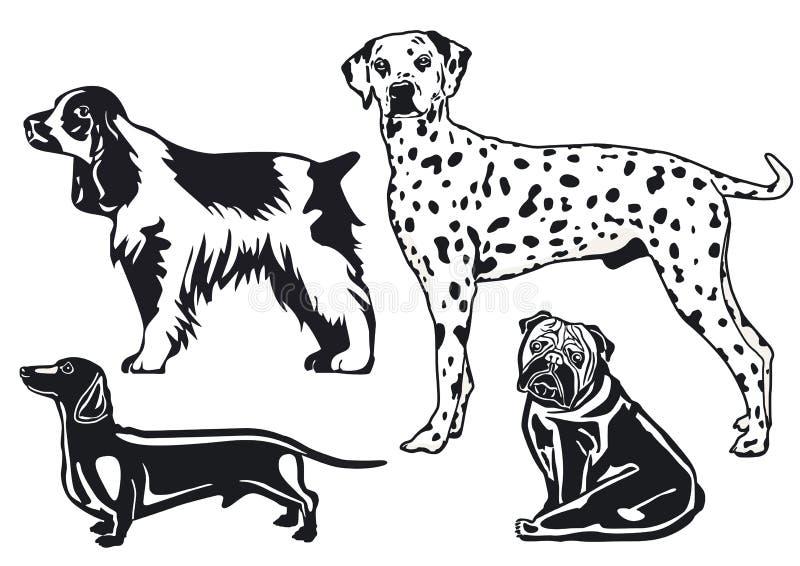 Razze dei cani illustrazione di stock